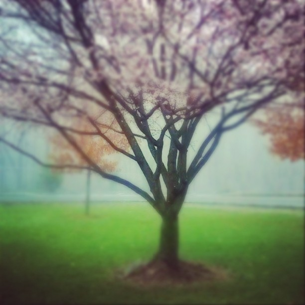 InstagramCapture_80f55f2c-cc6d-4580-9901-f6ea6ceffae3.jpg