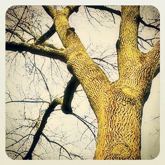 InstagramCapture_aee45596-163b-4702-8f03-a3f1d89091b3.jpg