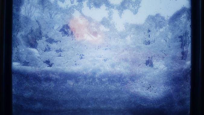 Snow against glass.jpg