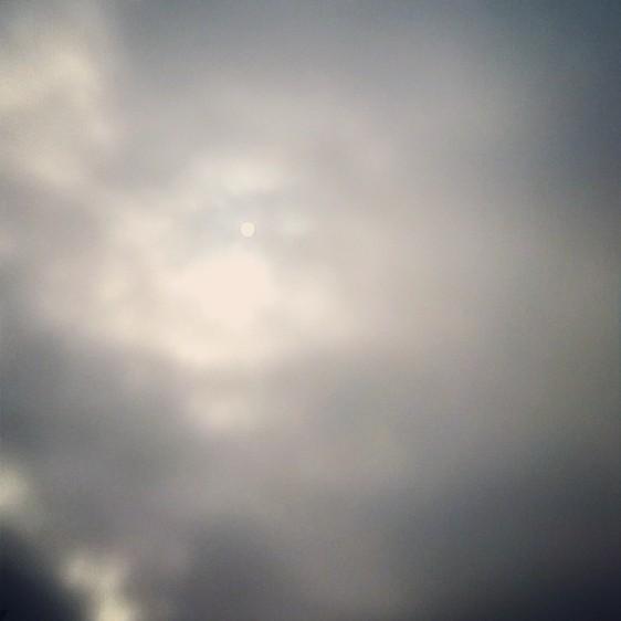 Gray Winter Day.jpg
