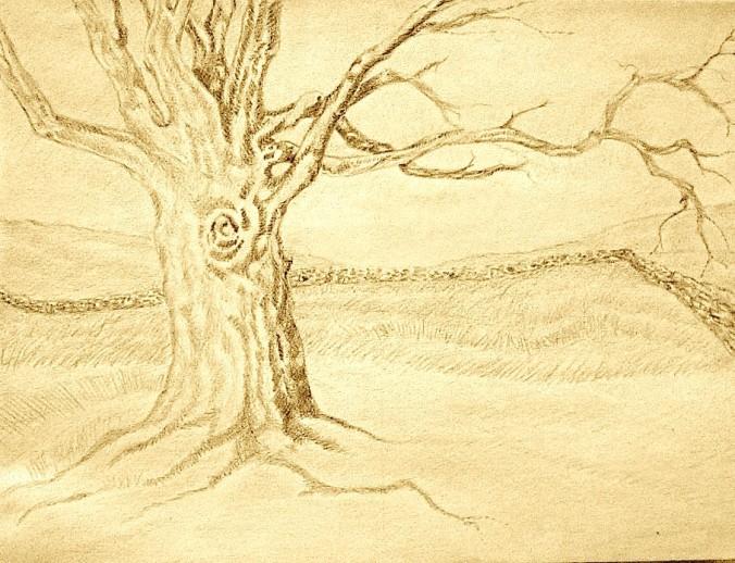 Huge Tree.jpg