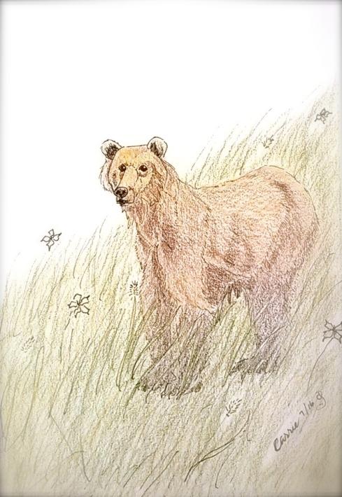 four bears.jpg