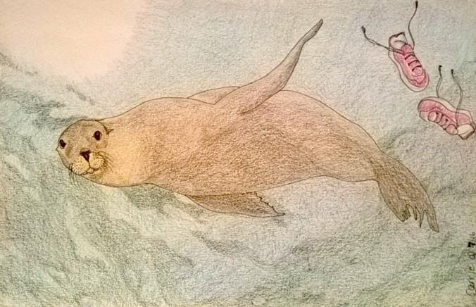 Sea lion.jpg