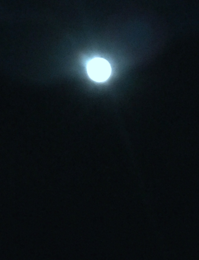 Adam's Moon.JPG