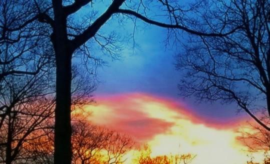Wintering Sky.jpg