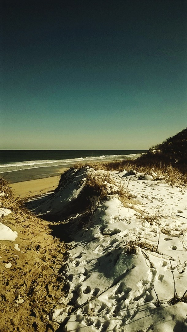 Snow, Sand, & Sea.jpg