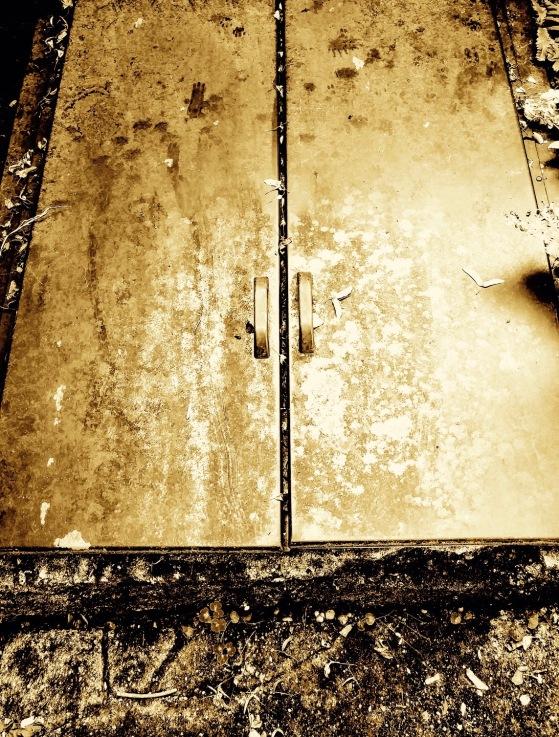 storm door.jpg