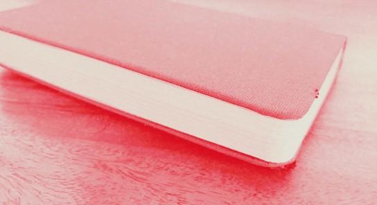 Pink Book.jpg