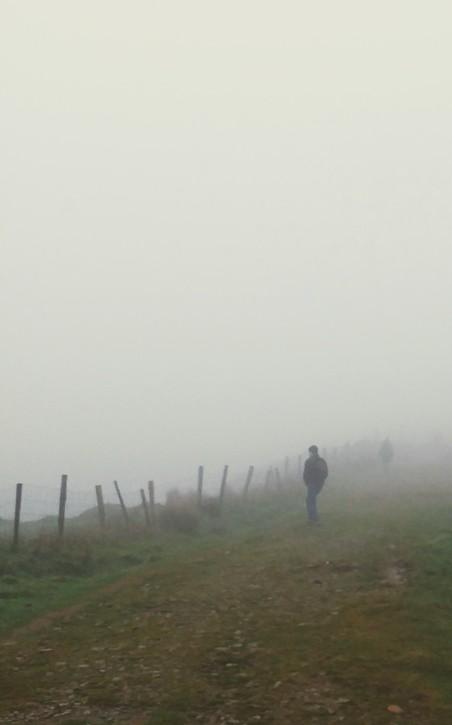 Irish Mist.jpg