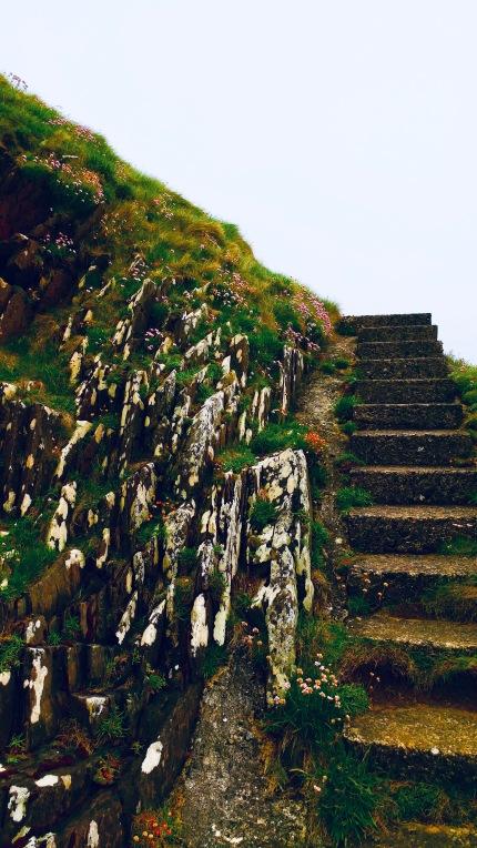 Irish Steps to the Sea.jpeg