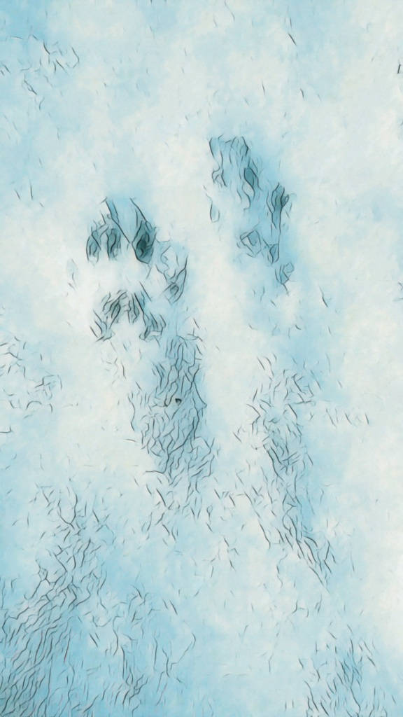 An augmented photograph of animal tracks in the snow.