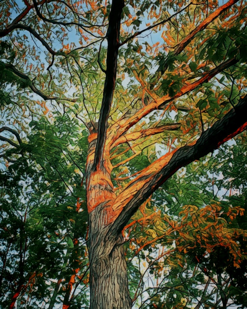 An artfully altered image of an oak tree, lit up by the setting sun's light.