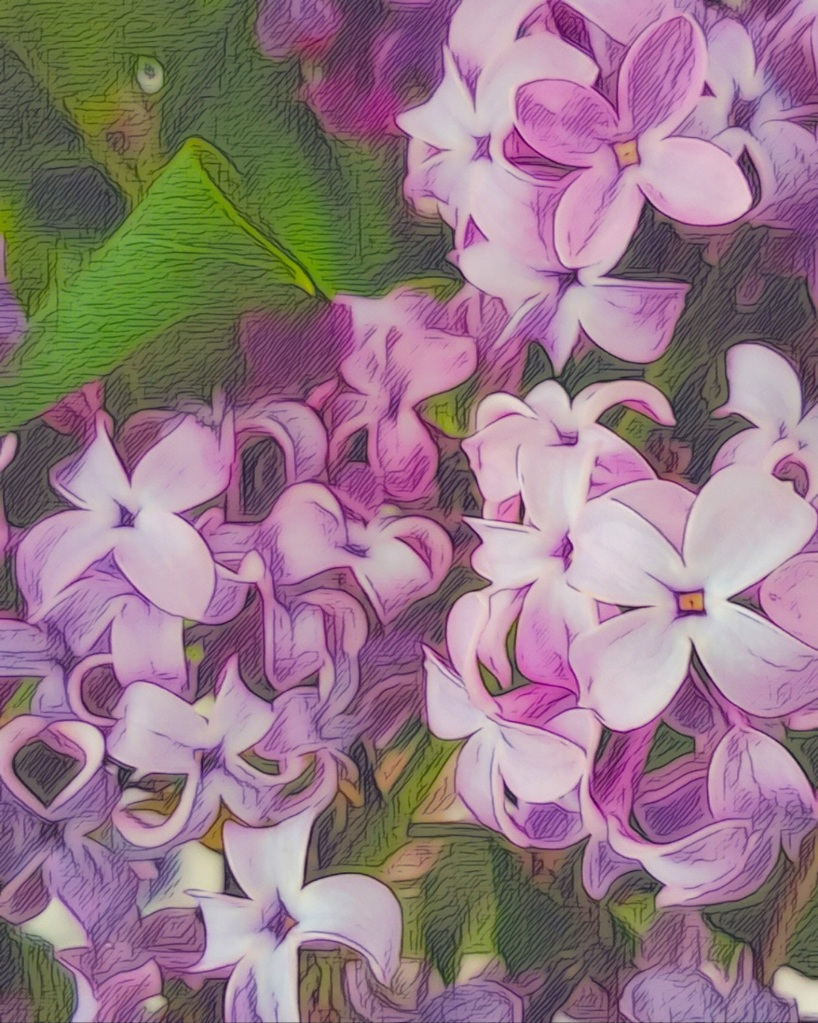 An artfully augmented photo of blooming lilacs, up close.
