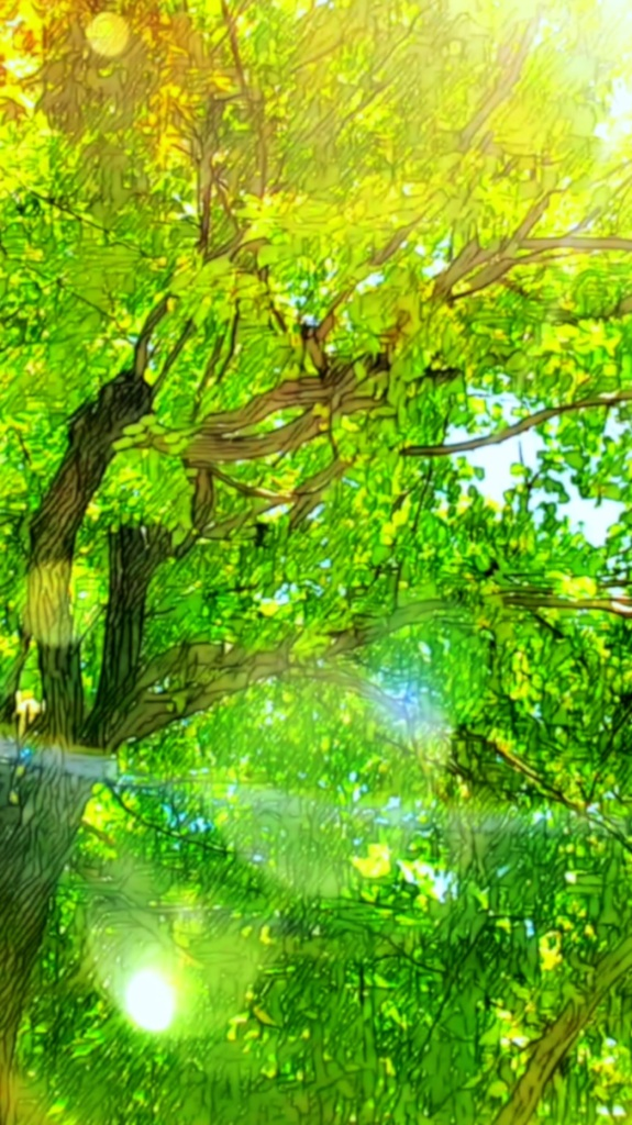 An artfully altered photo, looking up through the sunlit branches of a Linden Tree, aka American Basswood, aka Bee Tree.