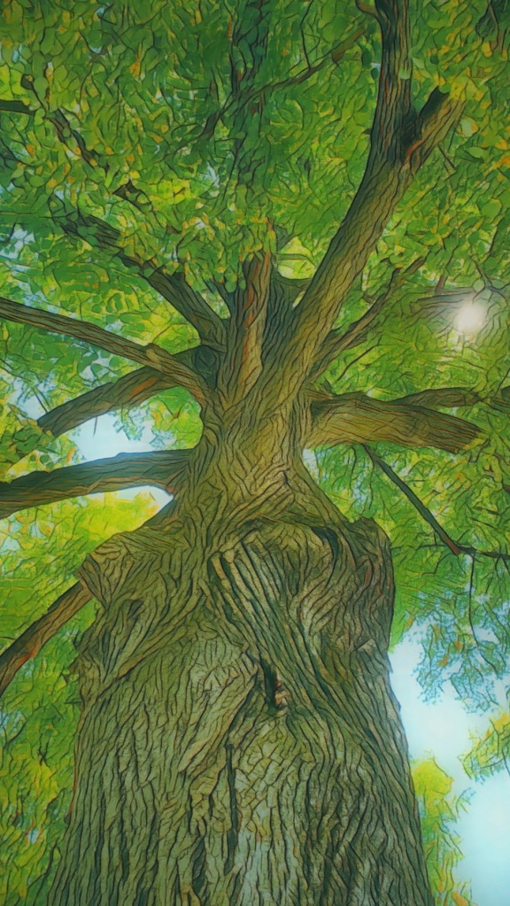An artfully altered photo of a Linden Tree in full leaf.
